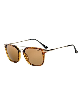 Liive Shaz Sunglasses - Polarised - Tort-eyewear-HYDRO SURF