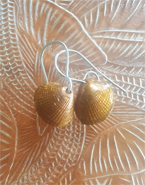 Copper Cockle Earrings with Silver Hooks-jewellery-HYDRO SURF